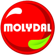 logo MOLYDAL